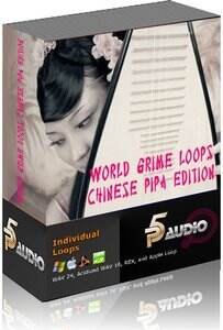P5 Audio World Grime Loops and Licks Chinese Pipa MULTiFORMAT