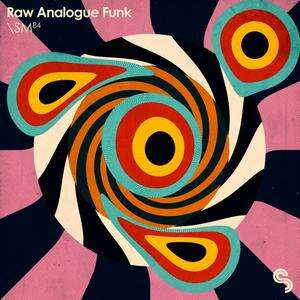 Sample Magic Raw Analogue Funk MULTiFORMAT